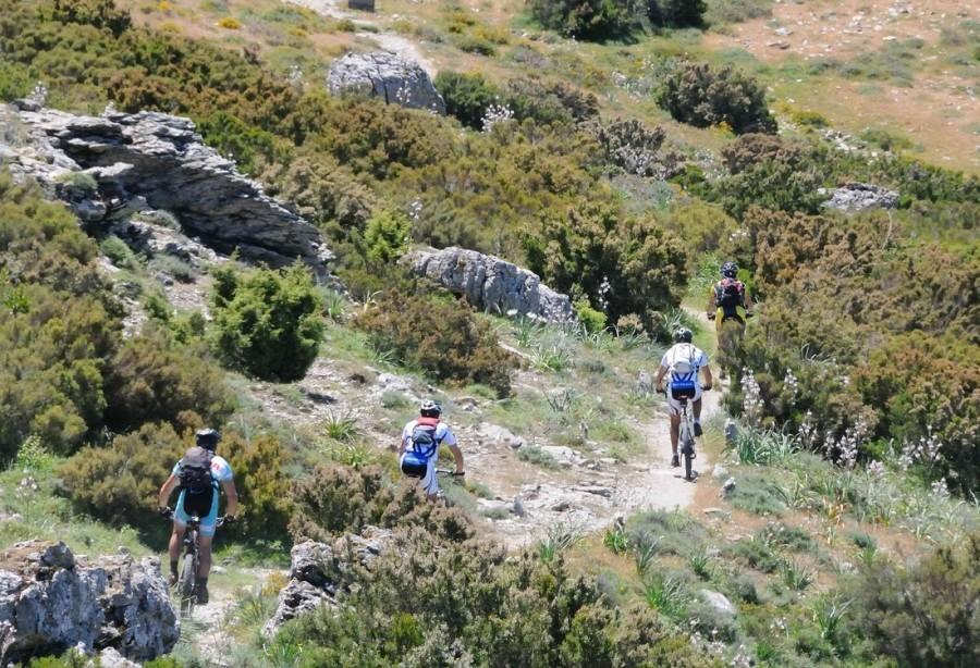 Tritt moutainbiken.jpg Tritt Case in Sardegna 40plusteens image gallery