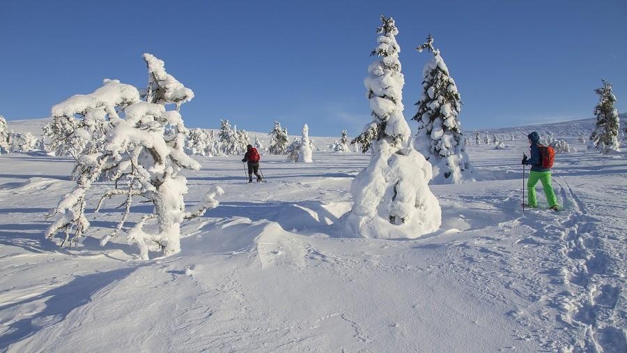Travelnauts rondreis finland-lapland-sneeuw-winter-skien-sport Familiereis winters Lapland 40plusteens image gallery
