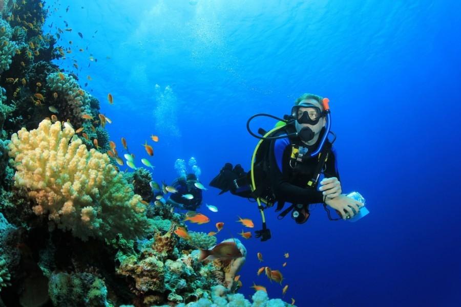 Sardinie diving kl.jpg Tritt Case in Sardegna 40plusteens image gallery