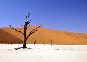 Local Hero Travel rondreis Afrika Namibie deadvlei Namibië rondreis familie avontuur 40plusteens