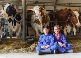 Landrijk De Reesprong in Twente, Nederland kinderen bij koeien Landrijk de Reesprong 40plusteens