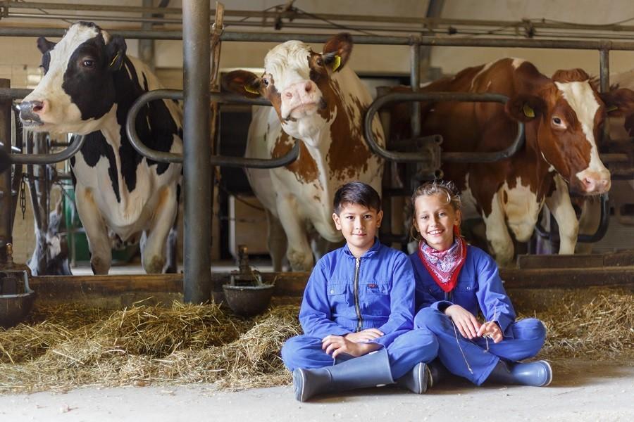 Landrijk De Reesprong in Twente, Nederland kinderen bij koeien Landrijk de Reesprong 40plusteens image gallery