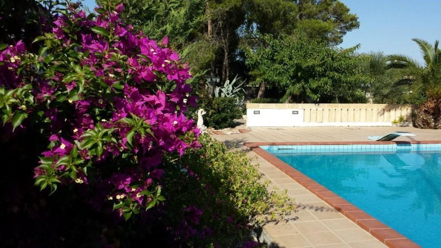 Al Gelsomoro in Apulie, Italie zwembad 2 Al Gelsomoro 40plusteens image gallery