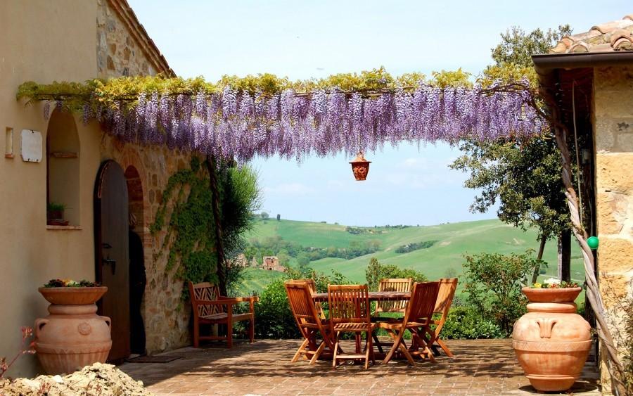 Tritt terras met druiven.jpg Tritt Case in Toscana 40plusteens image gallery